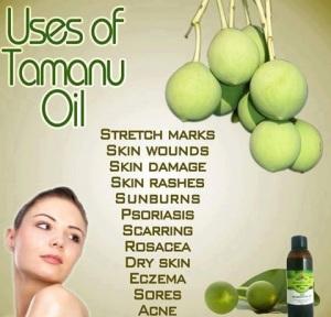 Uses-for-Tamanu-Oil